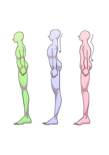 姿勢革命の画像